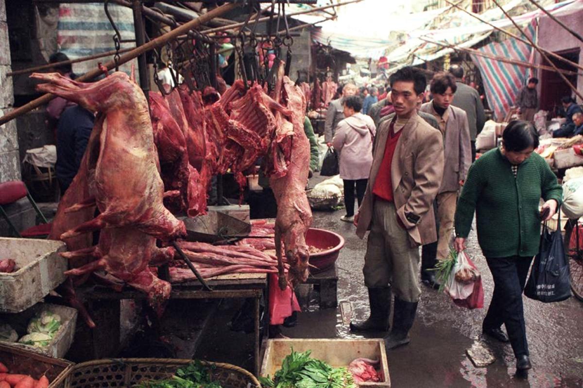 Wet market: paura e dolore, ben mescolati con cultura e mancanza di normeigieniche
